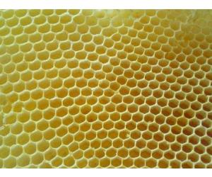 Witte Bijenwas